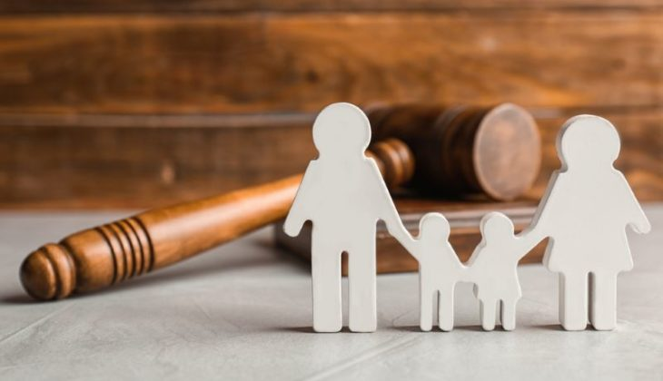 legal custody rights